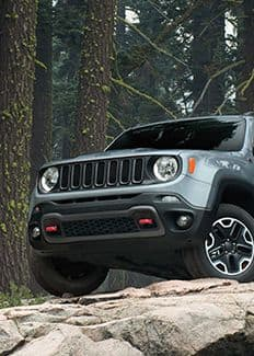 2016 Jeep Renegade Trailhawk 4x4 System Thumbnail