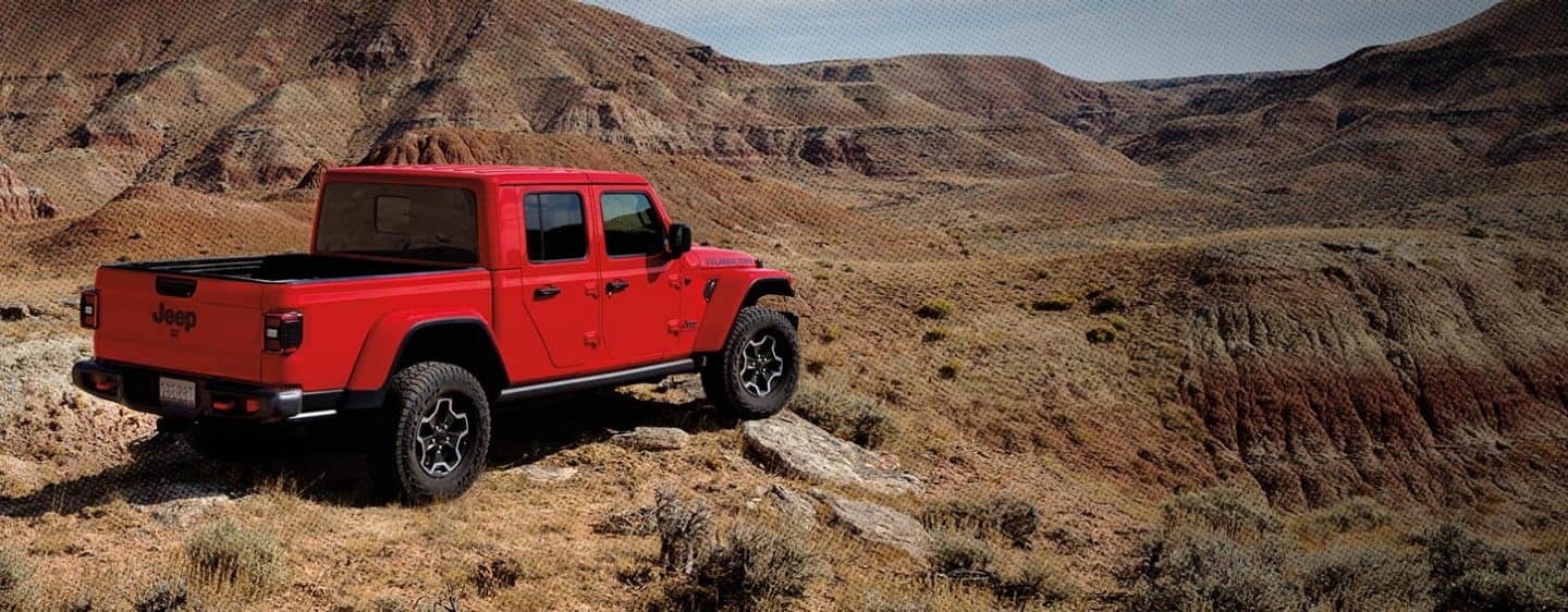 Red Gladiator on desert mountain