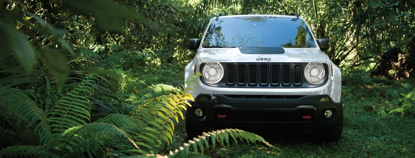 2018 Jeep® Renegade - Vehicle Identification Number (VIN)